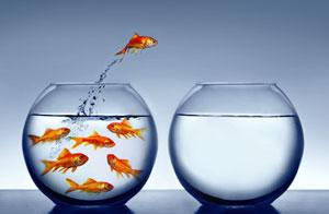 Mut zur Veränderung! – Teil 9: Verantwortung übernehmen.